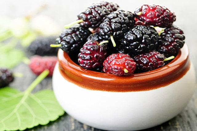 توت/مواد غذایی شادی آور